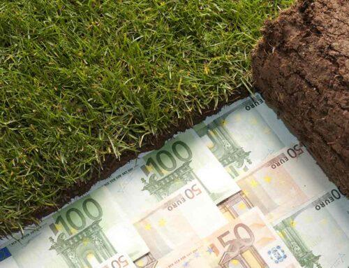 Coraz więcej dłużników ukrywa swój majątek przed wierzycielami